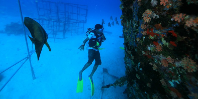 Angsana Ihuru diving with Tropical Warehouse
