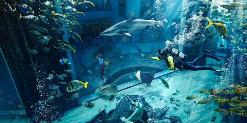 Underwater views at Atlantis, the Palm