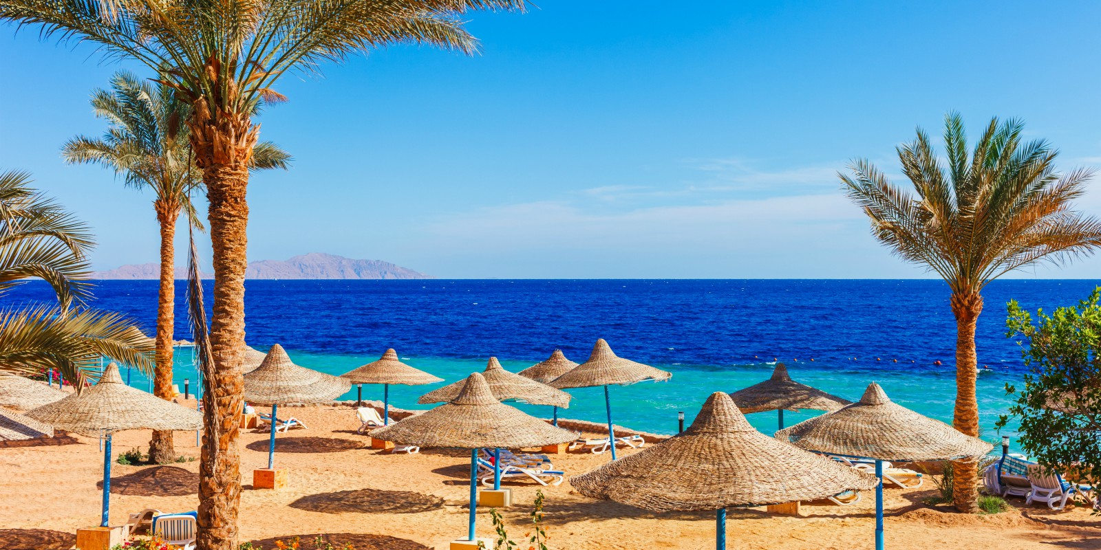 Travel blog: Back for 2020 – Sharm el Sheikh