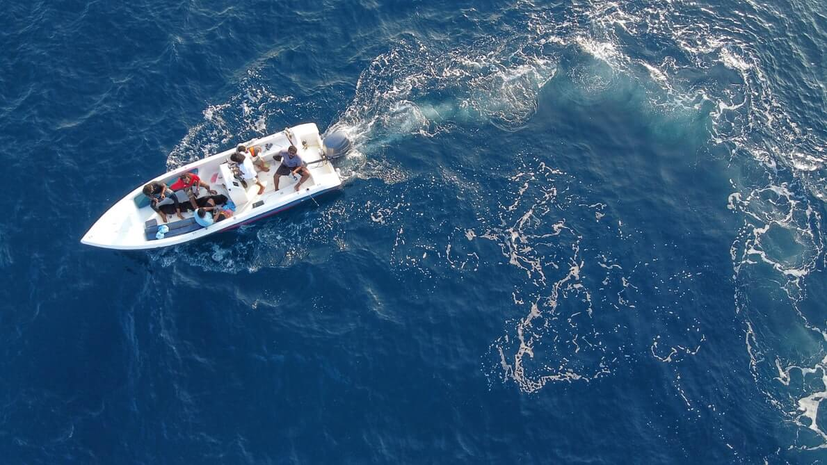 Speed boat transfer