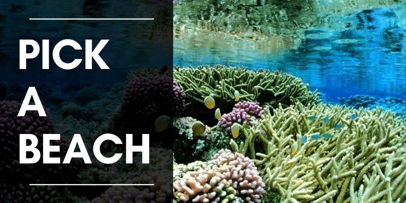 Pick a beach