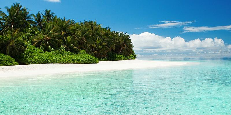 picture of a perfect Maldivian beach