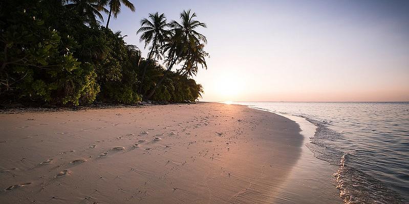 A tropical beach landscape in Mauritius