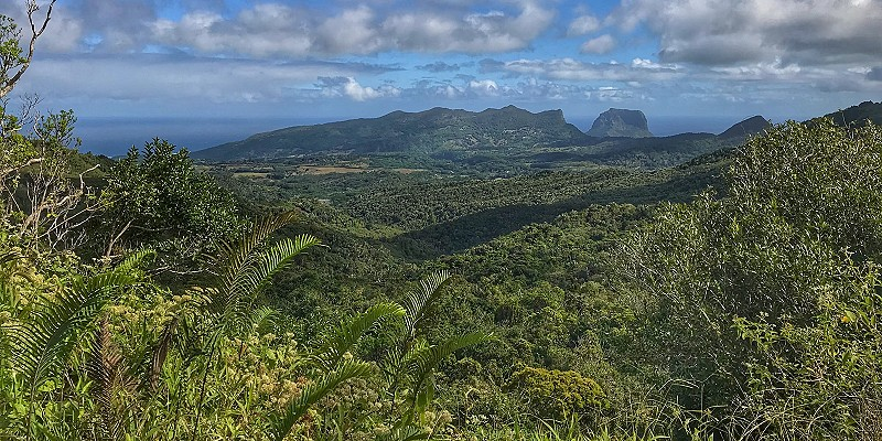 the lush tropical landscape of southern Mauritius