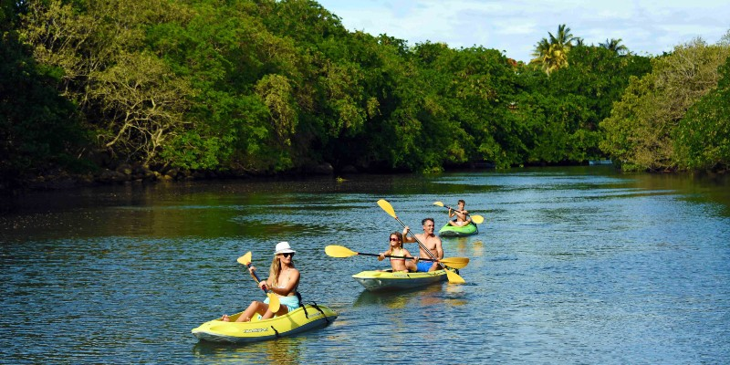 A family on a kayak mangrove safari in Mauritius