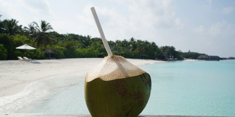 A coconut drink in the Maldives