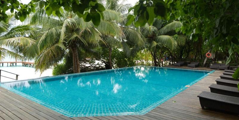 Eriyadu resort pool shrouded by trees
